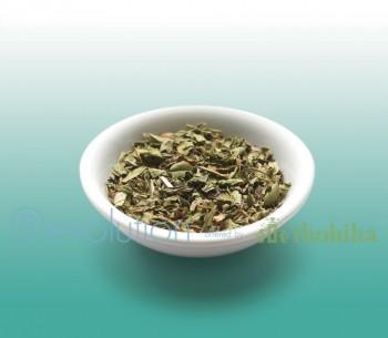 Revolution Tee - Southern Mint Herbal Tea - Koffeinfrei